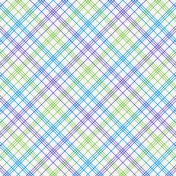Paper 056- Plaid- Birthday