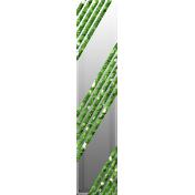 Birthday Tape- Green