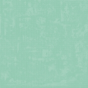 Challenged Solid Paper- Seafoam- Embossed
