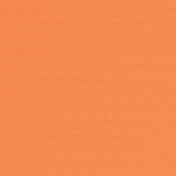 Challenged Solid Paper- Orange- Embossed