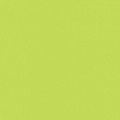 Challenged Solid Paper- Lime