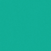 Challenged Solid Paper- Teal