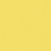 Challenged Solid Paper- Yellow