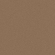 Taiwan Solid Paper- Cardboard- Brown