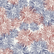 July Fourth Paper- Fireworks