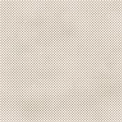 Dino Paper- Brown Polka Dot