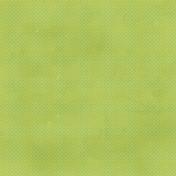 Dino Paper- Polka Dot- Green