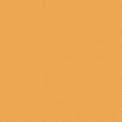Dino Paper- Solid Orange