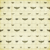 Insects Paper
