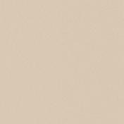Berlin Solid Paper 02e- Tan