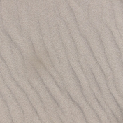Beach Textures Paper- Sand 01