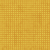 PD 29- Orange
