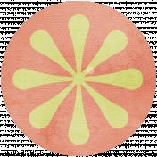 Discover Circle- Orange Slice