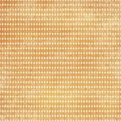 Circles 15 Paper- Orange