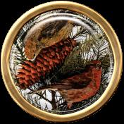 Ephemera Bird Brad 04