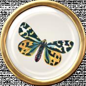 Ephemera Butterfly Brad 01