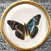 Ephemera Butterfly Brad 04