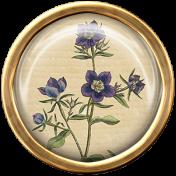 Ephemera Flower Brad 08