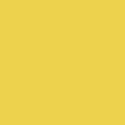 E&G Yellow Paper