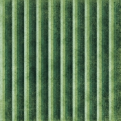 Stripes 35 Paper- Green
