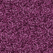 Purple Glitter (together again)