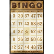 Bingo Card- Brown