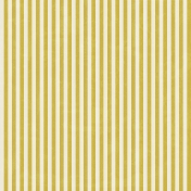 Outer Space Stripes Paper