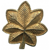 Khaki Scouts Gold Leaf