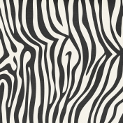 Mix & Match Zebra Print Paper