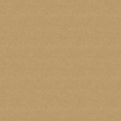 Pets Solid Paper- Tan