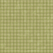 Plaid 28 Paper- Green