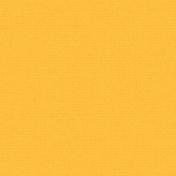 Boozy Beer Paper- Orange