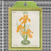 Iris Seed Packet