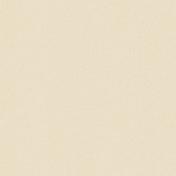 Brighten Up Paper- Solid I- Soft Grayish Orange