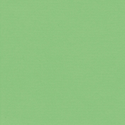 Like This- Green Paper