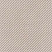 Lake District- Diagonal Stripes Paper- Gray
