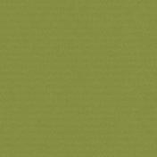 Winter Plaid- Light Green Paper