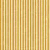Stripes 54 - Gold & White Paper