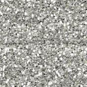 Silver Glitter 2- Versailles