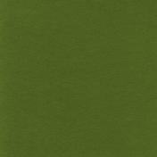 Egypt- Green Paper
