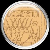 Egypt- Oxen Brad