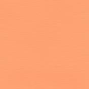 Oceanside- Coral Paper