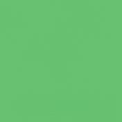 Oceanside- Green Paper