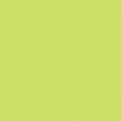 Oceanside- Light Green Paper