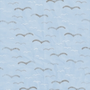 Coastal- Seagull Paper