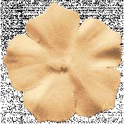 DSA March 2014- Peach Flower