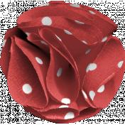 DSA March 2014- Red Flower
