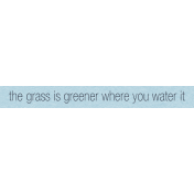 Where Flowers Bloom Labels- Grass Is Greener Where You Water It