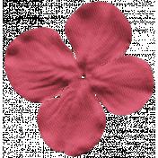 Flower 036