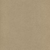 Texture Kit #5 - Cardboard -Paper 56